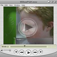 willow-mov.jpg